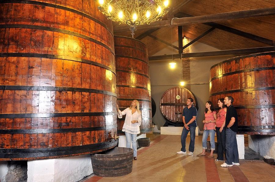 Bus del Vino Origen de Somontano