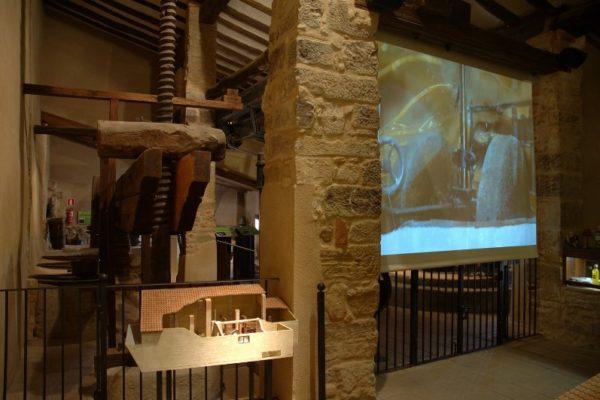 establec_museos_aceite_04