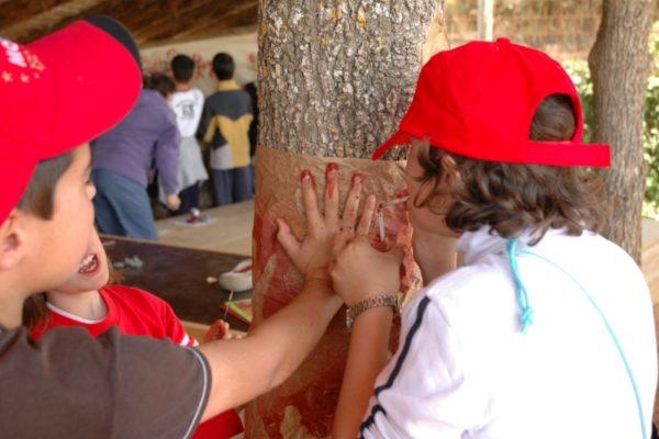 establec_museos_arterupestre_04