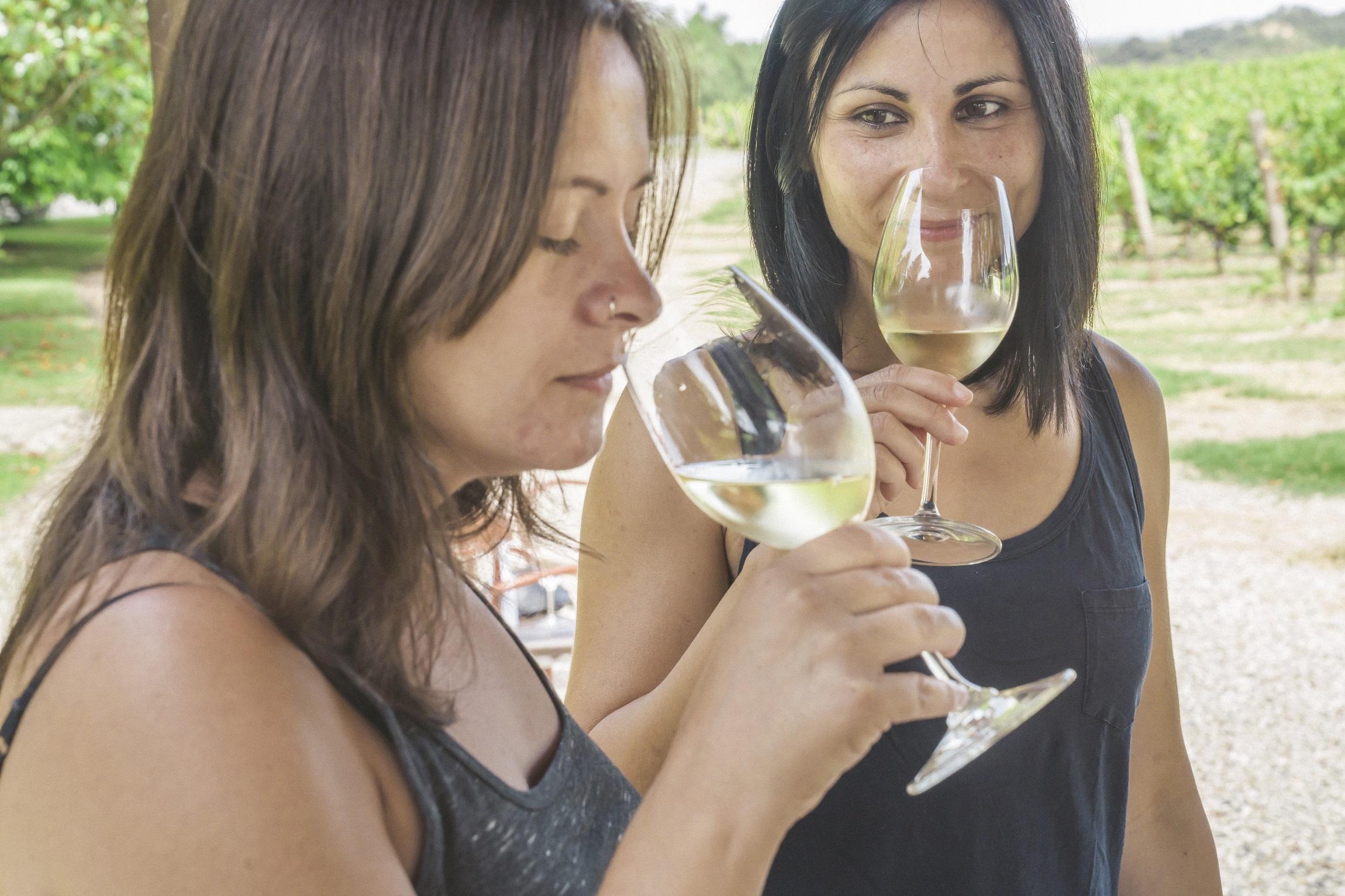 La Ruta del Vino Somontano comienza hoy un ciclo formativo para ahondar en el conocimiento del vino